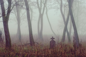 Spooky cemetery in the forest