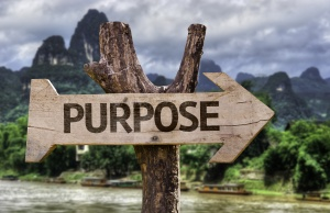 Purpose wooden sign with a forest background